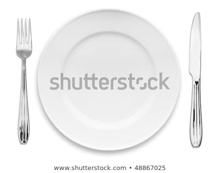 Elegant white dinner plate Stock photo © Digifoodstock