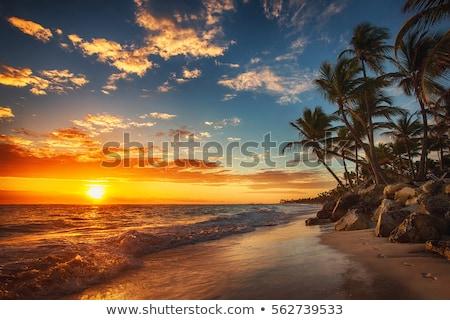 fából · készült · székek · naplemente · tengerpart · kettő · megnyugtató - stock fotó © hofmeester