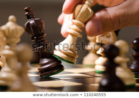 The moves of the chess rook Stock photo © Olena