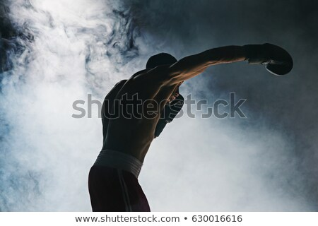 Portrait of young handsome afroamerican boxer in gloves Stock photo © deandrobot