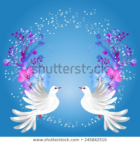 two white dove fly on blue background stock photo © orensila
