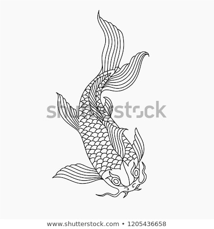 Vintage style koi carpe poissons illustration Photo stock © Krisdog