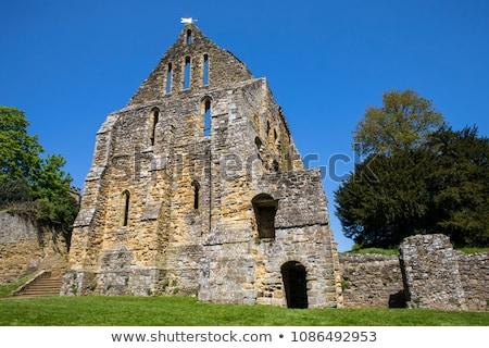 strijd · abdij · sussex · kerk · Engeland · toren - stockfoto © smartin69