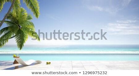 Playa terraza sol vista ilustración balcón Foto stock © lenm
