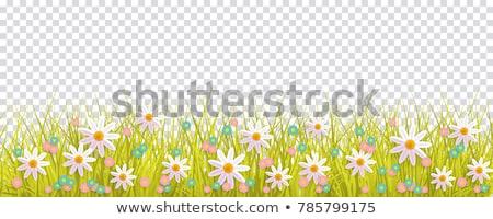 Stock fotó: Tavasz · idő · illusztráció · kártya · természet · tájkép