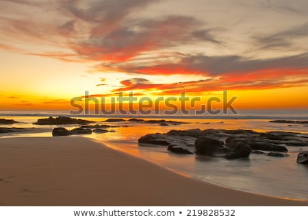 Beach sunset is a sunset sky with a wave rolling Stock photo © Mamziolzi