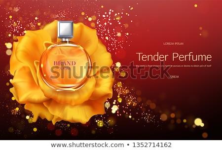 Altın parfüm şişeler vektör ürün paketleme Stok fotoğraf © frimufilms