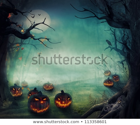 scary halloween background with bats and spider web Stock photo © SArts