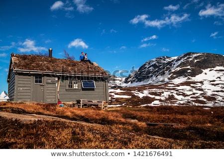 山 農場 ノルウェー 観光地 伝統的な ストックフォト © Kotenko