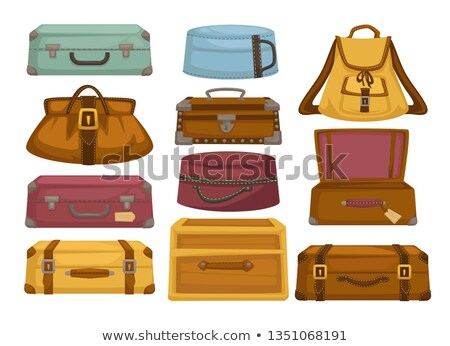 Capacious Bag with Handle and Zipper to Travel Stock photo © robuart