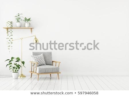 Plantas branco prateleiras parede quarto verde Foto stock © dashapetrenko