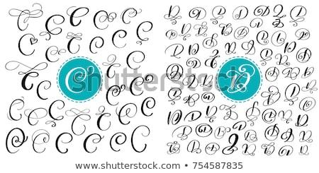 C harfi siyah vektör simge imzalamak Stok fotoğraf © blaskorizov