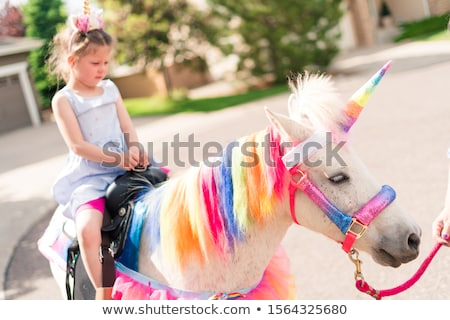 A unicorn character party theme Stock photo © bluering