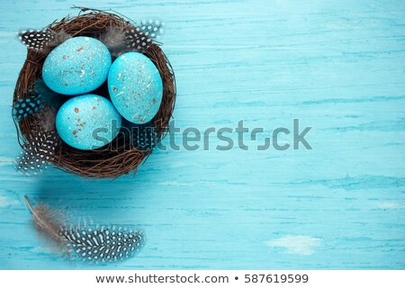 speckled easter eggs in nest stock photo © stephaniefrey