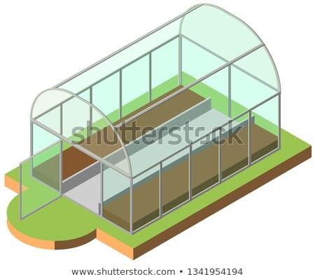 открытых теплица изометрический икона 3D изолированный Сток-фото © orensila