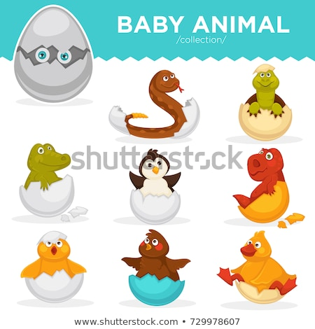 Happy Baby Penguin Cartoon Character Hatching From An Egg Stock photo © hittoon