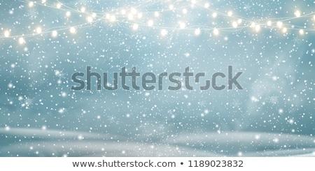 休日 ライト リビングルーム 外に クリスマス 休日 ストックフォト © jsnover