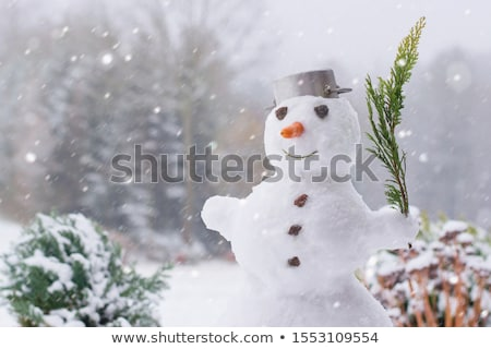 Snowman In Garden stock photo © monkey_business