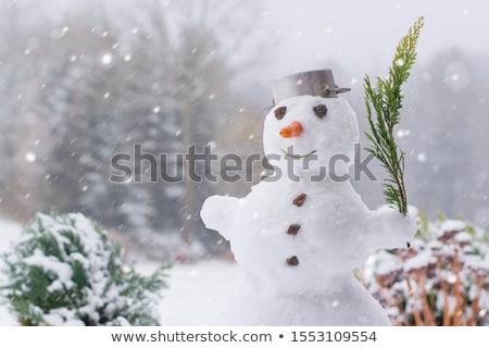 sneeuwpop · tuin · bos · sneeuw · bomen · park - stockfoto © monkey_business