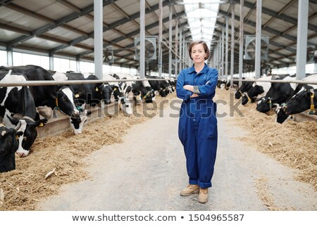 Pretty young farmhouse worker in workwear standing in long aisle of large stable Stock photo © pressmaster
