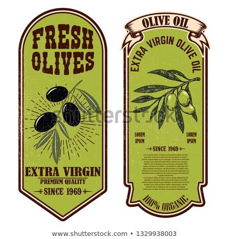 Szett friss olívaolaj címkék dizájn elem poszter Stock fotó © masay256