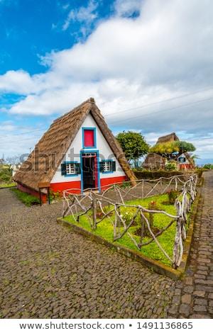 Geleneksel ev madeira ada görmek doğa Stok fotoğraf © boggy