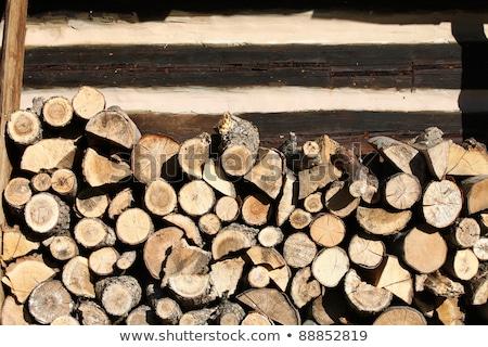 Tűzifa vidék kunyhó fa természet háttér Stock fotó © wjarek