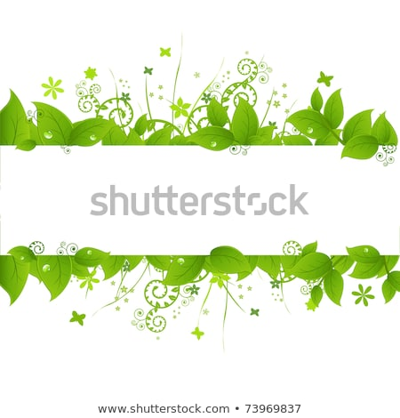verde · grama · verde · céu · flor · grama · sol - foto stock © adamson