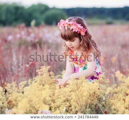 Meisje verbergen gele bloemen veld meisje gelukkig Stockfoto © goce