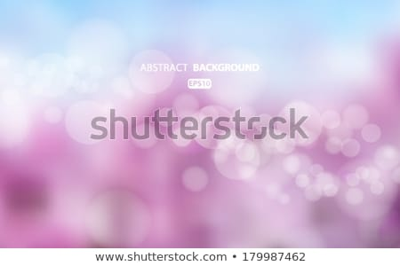 Absztrakt kék bokeh körök eps vektor Stock fotó © beholdereye