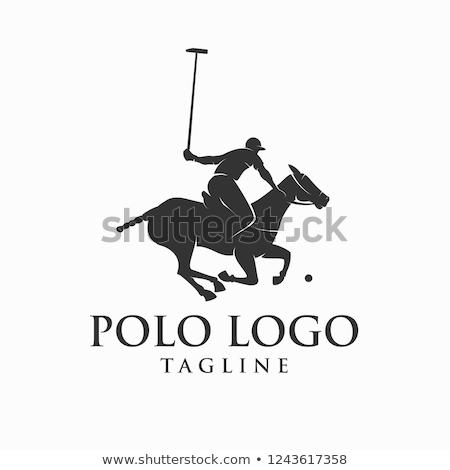 Polo Player stock photo © photography33