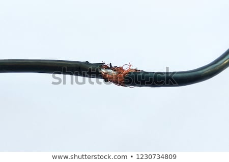 broken cable stock photo © dengess