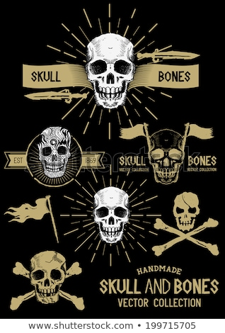 Pirackich czaszki 3d szkielet ostrzeżenie 3D Zdjęcia stock © AlienCat