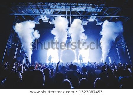 Mist batterij newfoundland Canada pistool Stockfoto © FER737NG