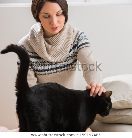 Big black cat comes to its owner to get some tenderness and care Stock photo © HASLOO