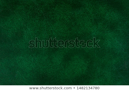 Green leather background stock photo © kloromanam