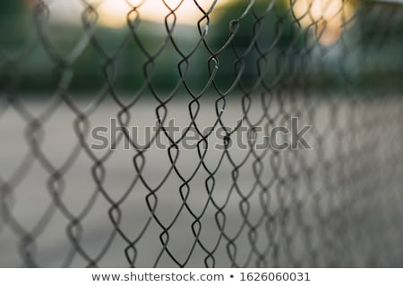 rusty chain link fence stock photo © pancaketom