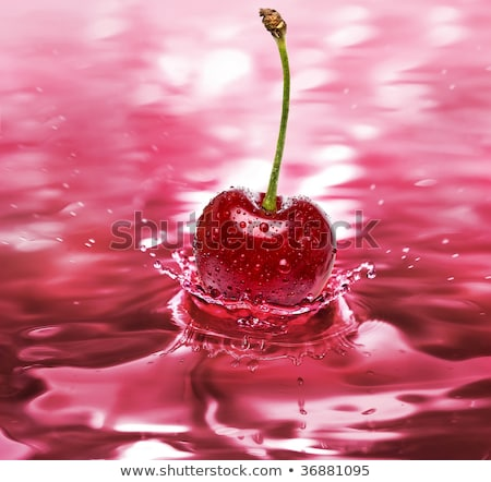 splashes of cherry juice or wine with droplets stock photo © arsgera