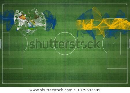 Futball zászló Belize zöld fű futball világ Stock fotó © MikhailMishchenko