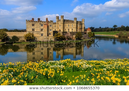 Leeds Castle stock photo © smartin69