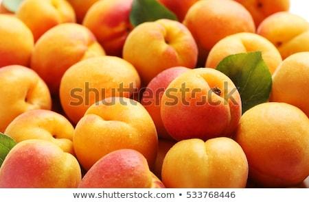 érett sárgabarack gyümölcs izolált fehér kivágás Stock fotó © natika