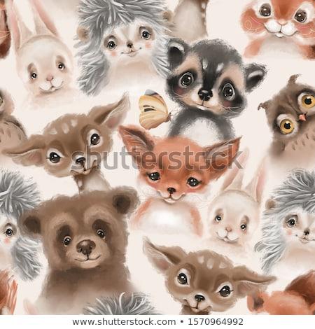 ストックフォト: 動物 · 4 · 色 · 手描き · グランジ