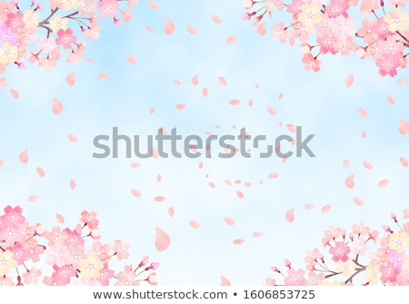 Cereza rama completo florecer cielo primavera Foto stock © shihina