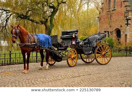 Rue Belgique traditionnel rouge brique peint Photo stock © jenbray