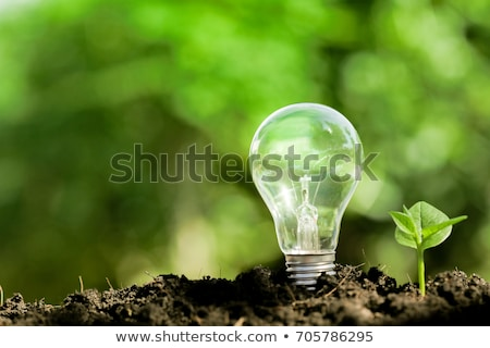 gloeilamp · gedekt · groen · gras · geïsoleerd · witte · groene · energie - stockfoto © cherezoff