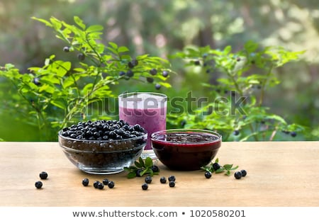Stock photo: Blue bilberry or whortleberry
