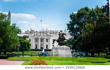 Washington Monument boven bloesems frame Stockfoto © backyardproductions