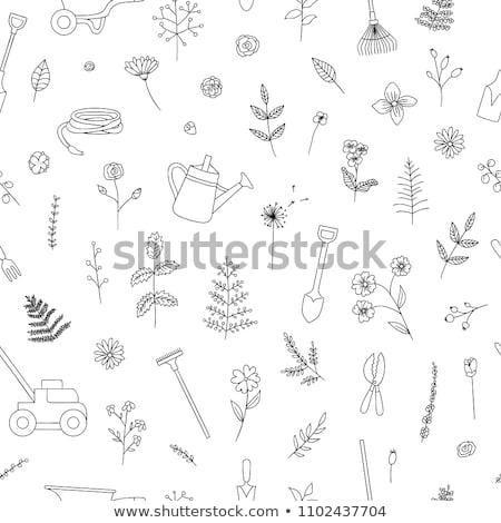 じょうろ · 花柄 · 小 · 孤立した · 白 · 水 - ストックフォト © kali