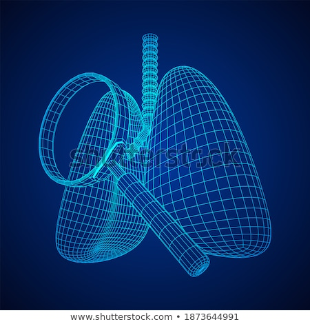 3d render of a human organs focused on lungs. 3d illustration. Contains clipping path Stock photo © Kirill_M