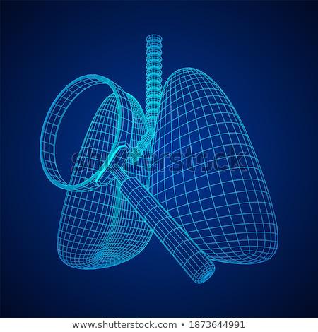 umani · polmone · infezione · medici · illustrazione · corpo - foto d'archivio © kirill_m